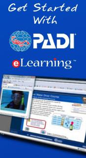 padi-widget